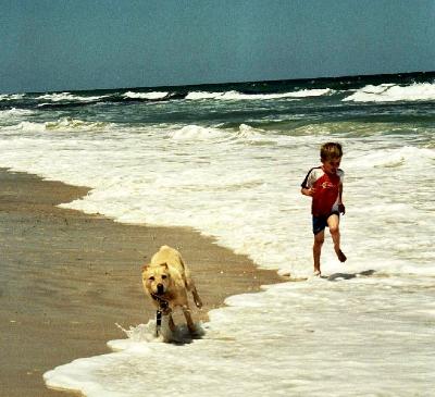 Arno Bay Beach